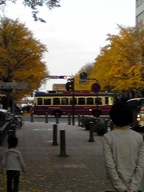 紅葉の美しい街横浜